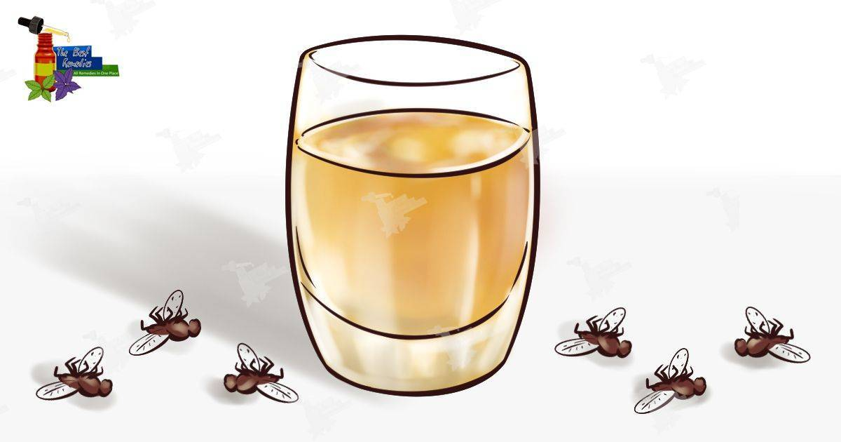 Уксус от комаров и мошек. делаем средство от комаров своими руками