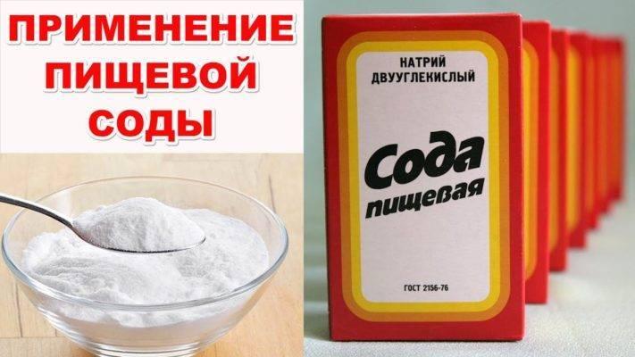 Кальцинированная сода от мучнистой росы на смородине — обработка кустов пищевой