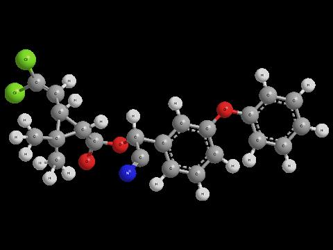 Как использовать циперметрин от клопов, его достоинства и недостатки