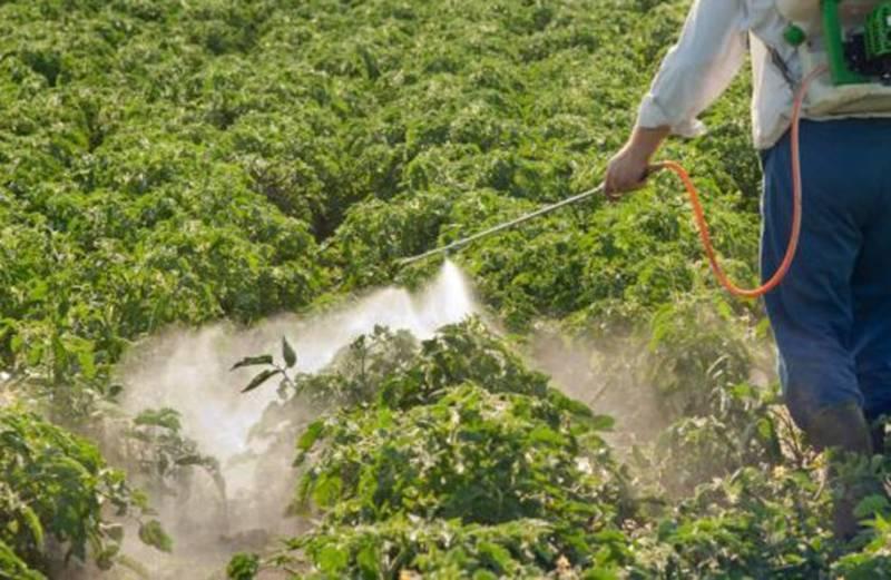 Инсектицид искра золотая: применение от вредителей для растений