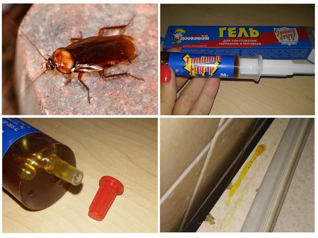 Обзор и инструкция по применению средства домовой против тараканов