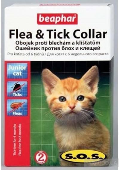 Ошейник от блох и клещей для кошек и котов