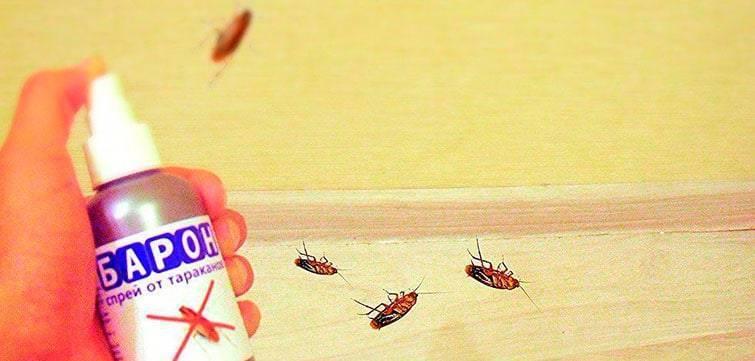 Барон спрей от тараканов — отзывы, эффективность, безопасность