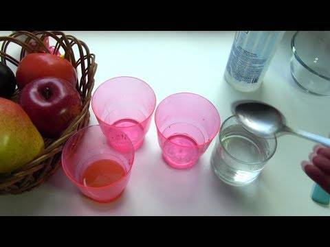 Как избавиться от дрозофил на кухне магазинными и народными средствами