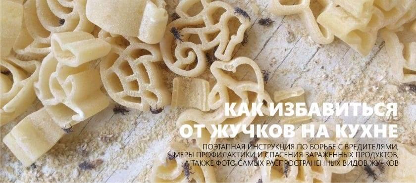 10 проверенных способов, чтобы навсегда избавиться от жучков в крупе на кухне