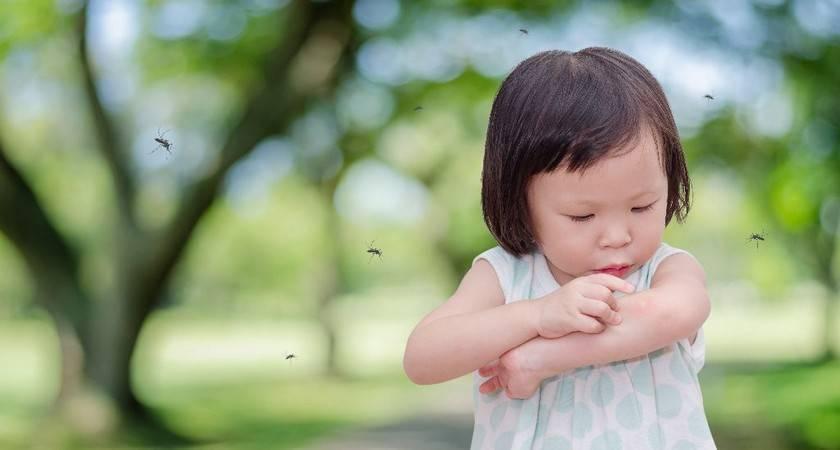 Содовый раствор от укусов мошек. как сделать содовый раствор от укусов комаров для детей и взрослых. какие последствия устраняет сода