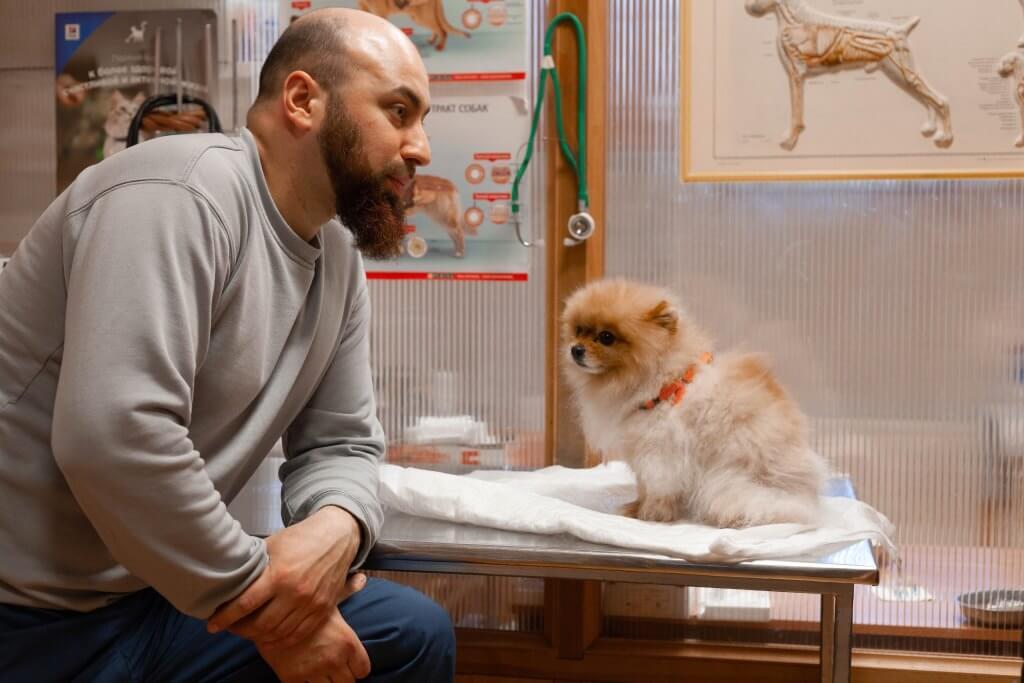 Привики от клещей для собак: ТОП-3 вакцин по отзывам заводчиков