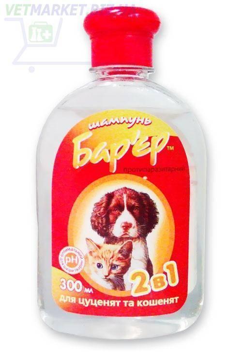 Как выбрать шампунь от блох для кошки