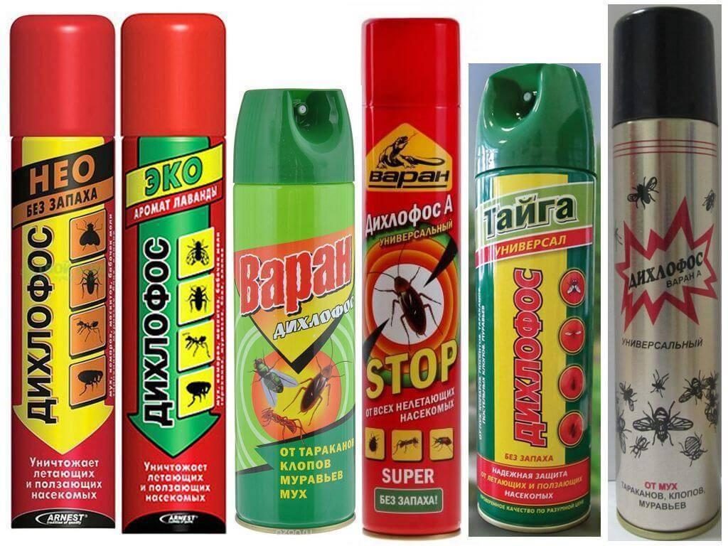 Что такое дихлофос и для борьбы с какими насекомыми он эффективен