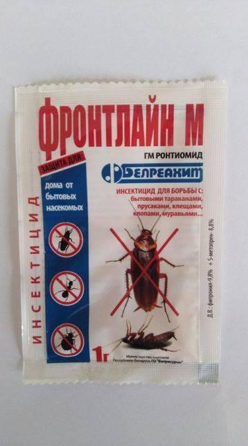 Самые эффективные методы борьбы против тараканов