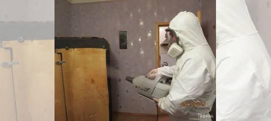 Использование холодного и горячего тумана в квартире для уничтожения клопов