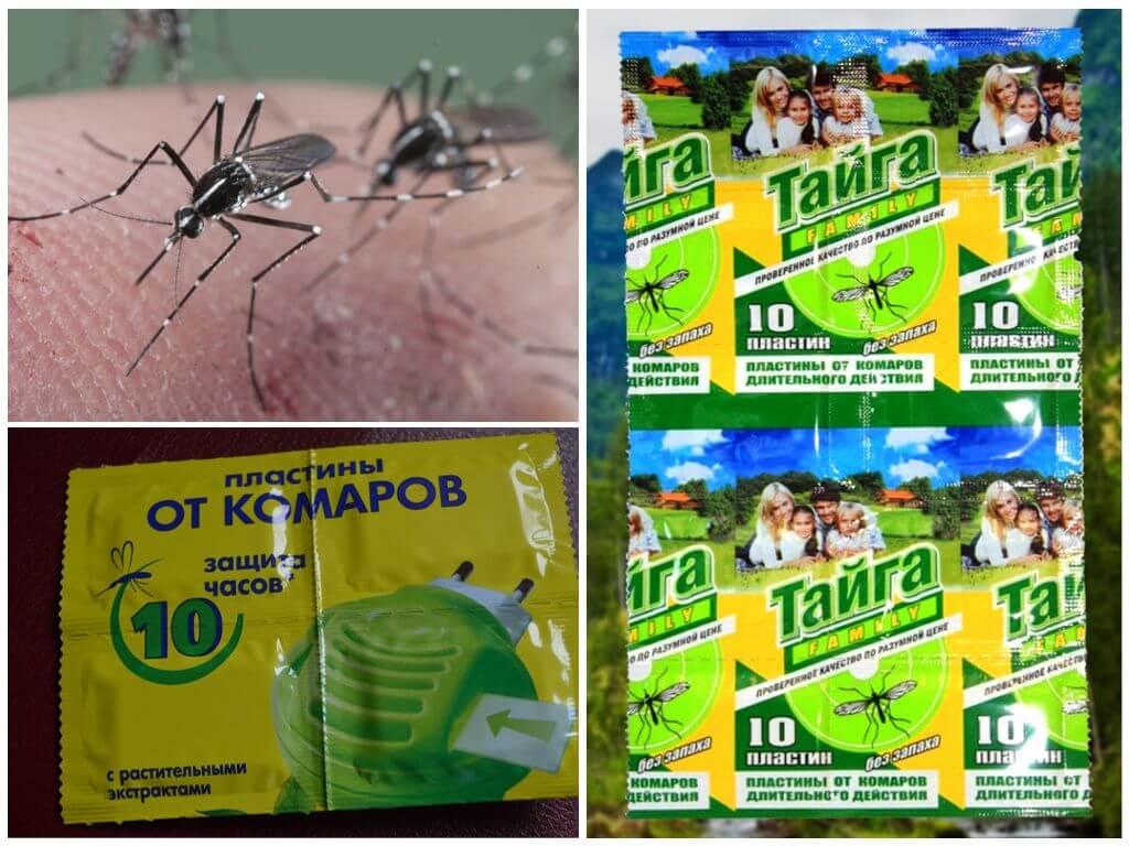 Комар носа не подточит: экспертиза репеллентов