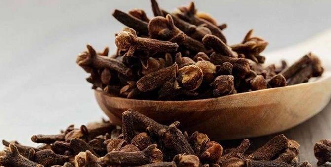 Лучшие рецепты с использованием эфирного масла от комаров и мошек.