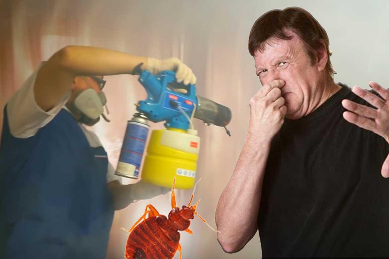 Как избавиться от запаха после травли клопов