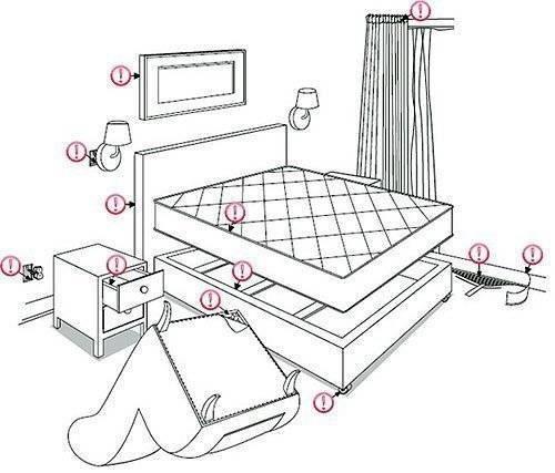 Где живут постельные клопы и как их найти