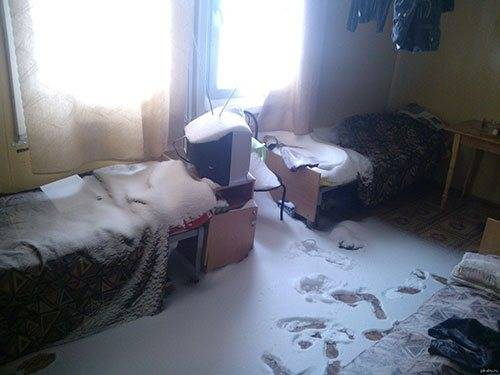 Чем травить клопов в квартире самостоятельно