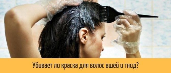 Эффективность применения серной мази от вшей и курс лечения. состав препарата от гнид: способ применения