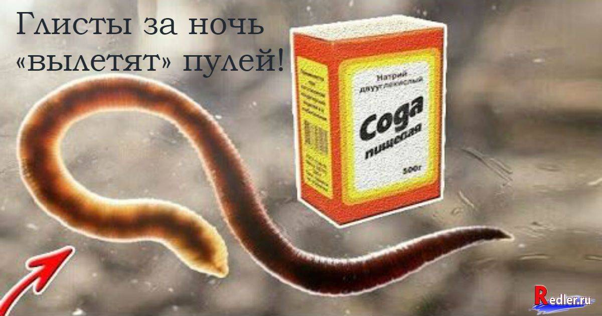 Лечение глистов народными средствами