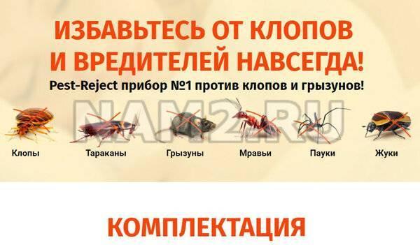 Плюсы и минусы ультразвукового отпугивателя тараканов