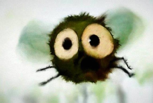 Описание и фото укусов мух