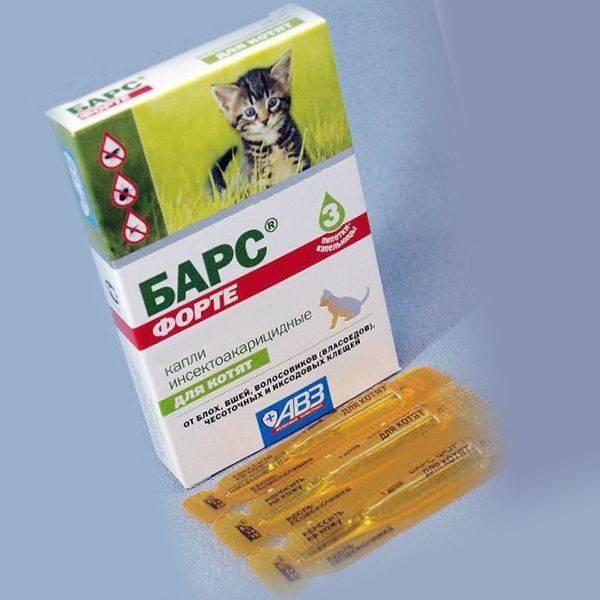 Капли барс для кошек: цели использования и инструкция по применению