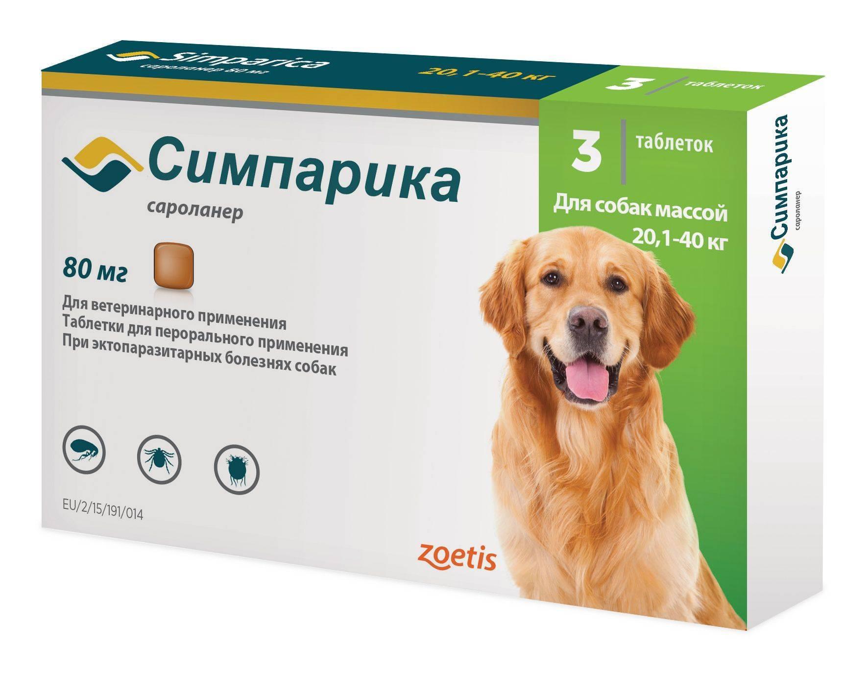 Лекарственный препарат симпарика от блох и клещей у собак