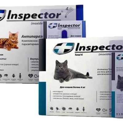 Капли для котят и взрослых кошек «инспектор тотал к» от блох, клещей и глистов: инструкция по применению препарата