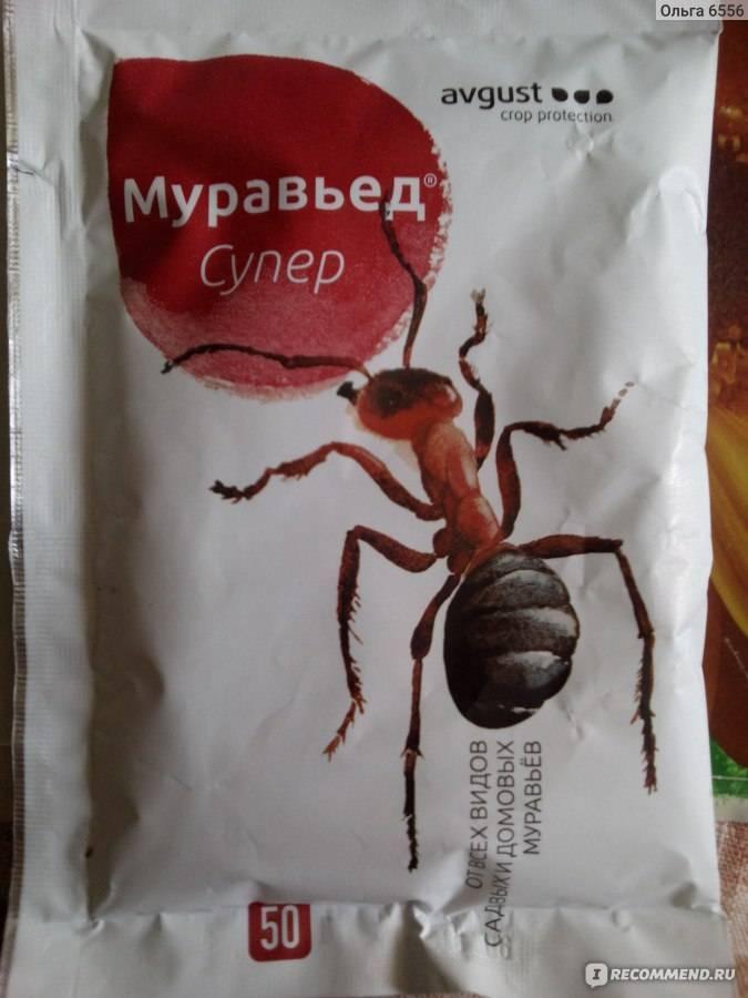 Средство муравьед от муравьев