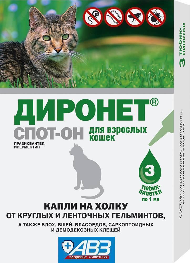 Средства от блох у кошек и котов