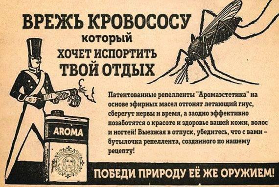 Эфирное масло цитронеллы: применение и свойства
