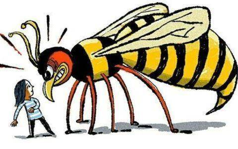 Что делать если укусила пчела?