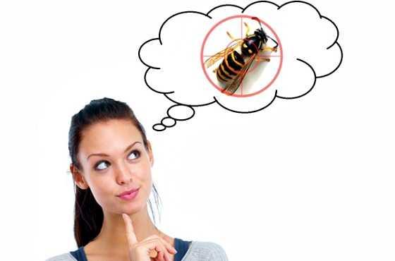 Подбираем средство от ос: обзор действенных инсектицидов и народных препаратов