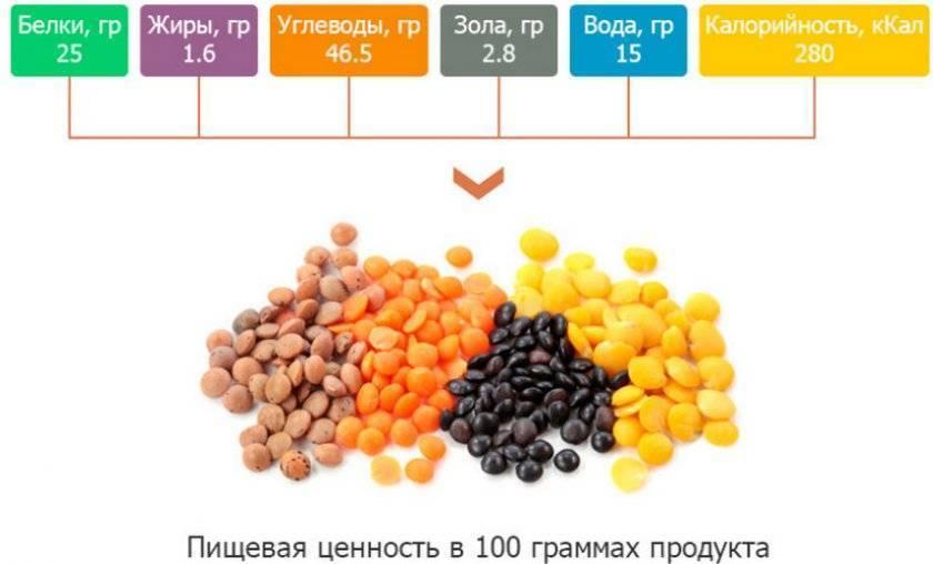 Все огородные вредители в таблицах с описанием, фото и мерами борьбы