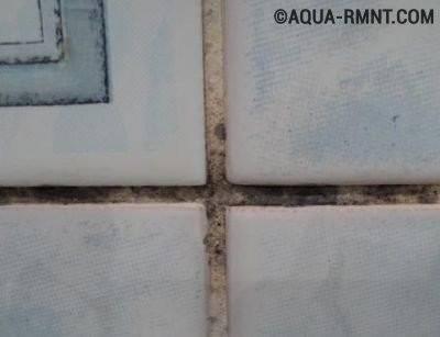Как избавиться от плесени в ванной на швах плитки