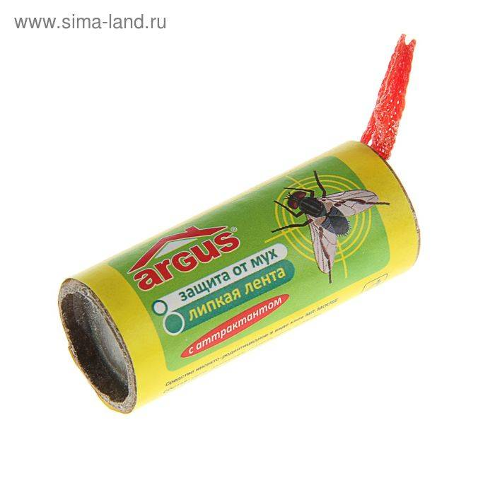 Эффективный метод в борьбе с мухами: липкая лента