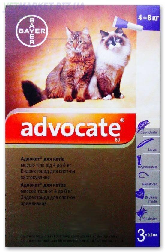 Капли адвокат для кошек: инструкция по применению