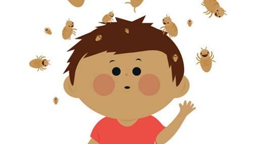 У ребенка вши - что делать? что делать, если у ребенка обнаружили вшей? лечение народными средствами