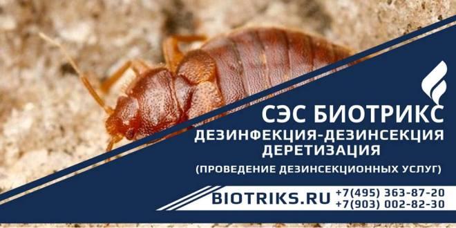 Обработка участка от клещей, комаров
