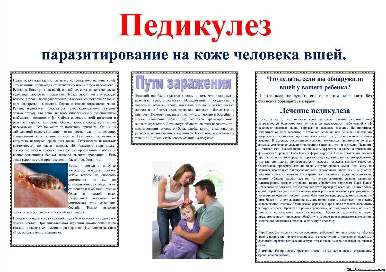Профилактика детей от вшей и гнид: шампунь, медикаменты и народные средства