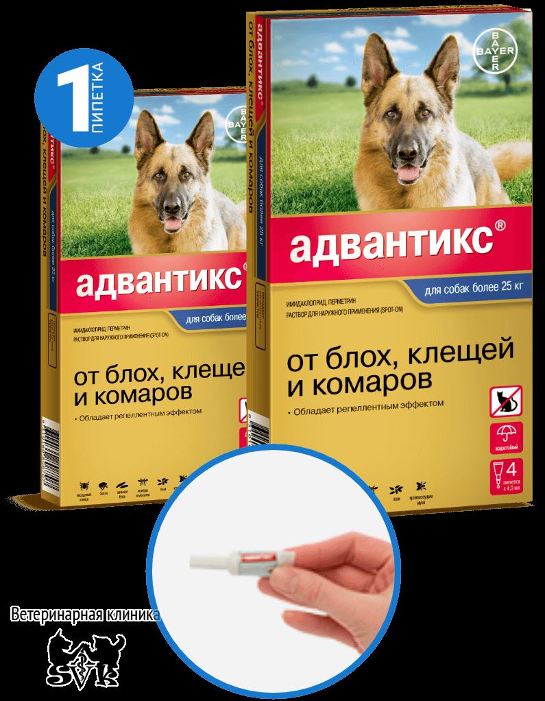 Капли адвантикс от блох для собак