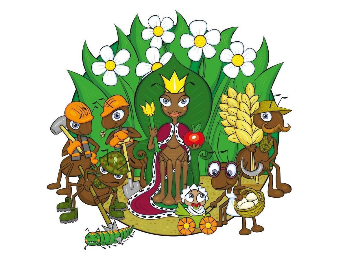 Сколько в среднем живут муравьи в природе — виды колоний