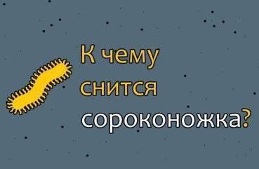 Символ сколопендра