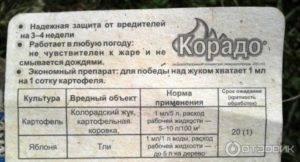 Препарат корадо от колорадского жука: инструкция по применению