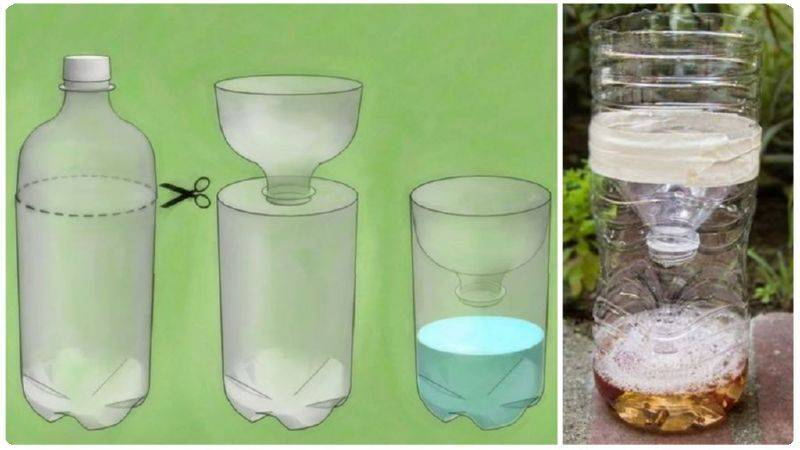Ловушка из пластиковой бутылки для «домашней» мухи