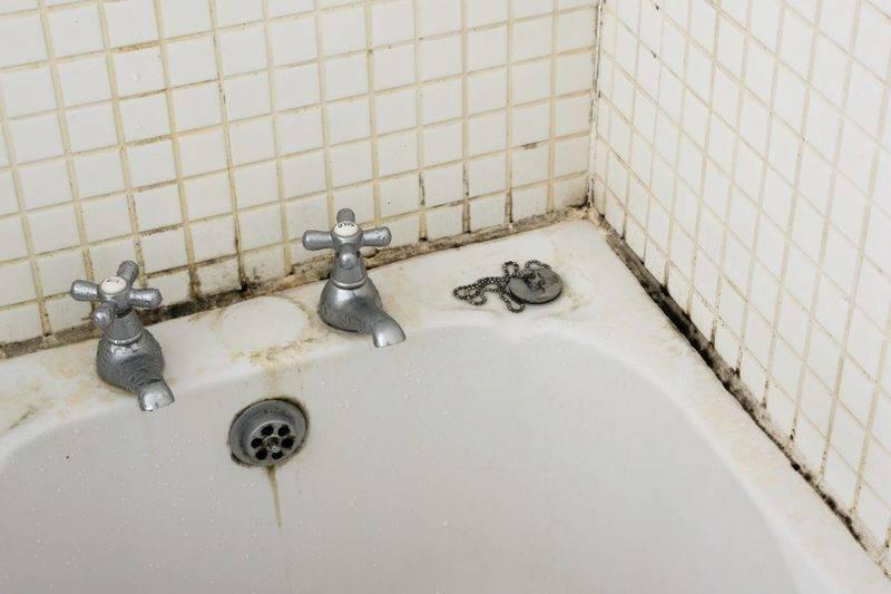 Как избавиться от черной плесени в ванной комнате
