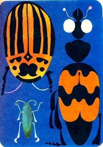 Жук плавунец окаймленный — безжалостный хищник и его потомство
