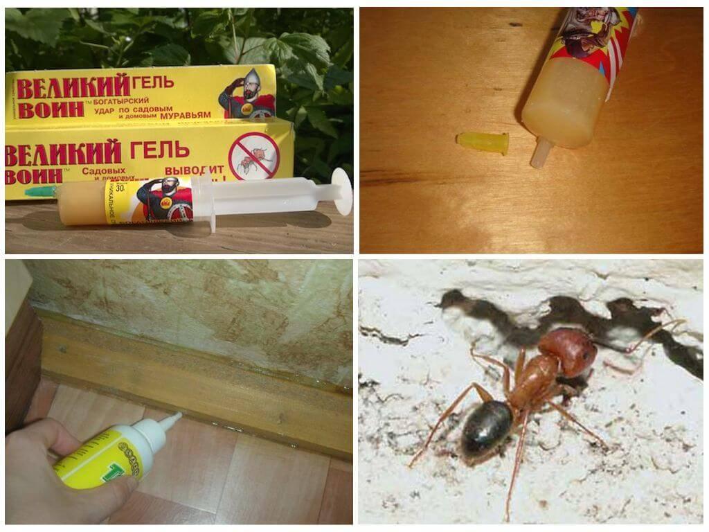 Гель Великий воин от муравьев