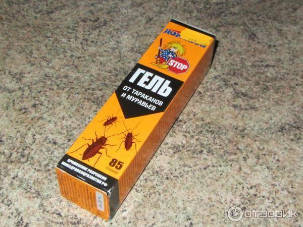 Гель от муравьев: чистый дом, раптор, домовой – что выбрать