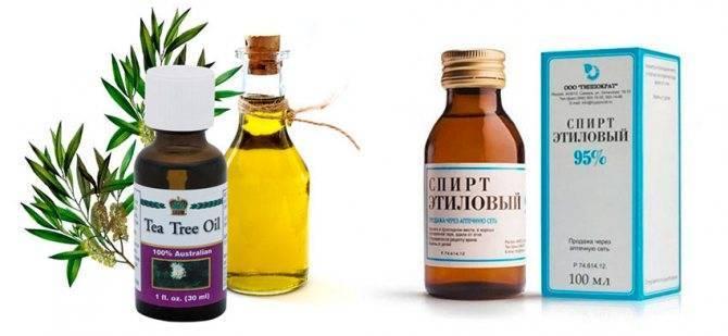 Эфирные масла против вшей масло