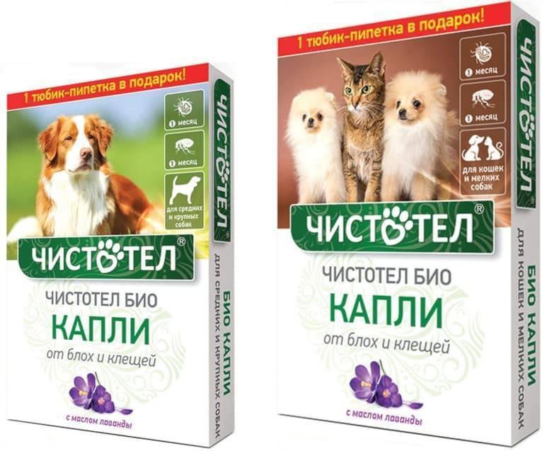 Капли на холку адвокат для кошек от блох, клещей и глистов: инструкция по применению, отзывы, цена